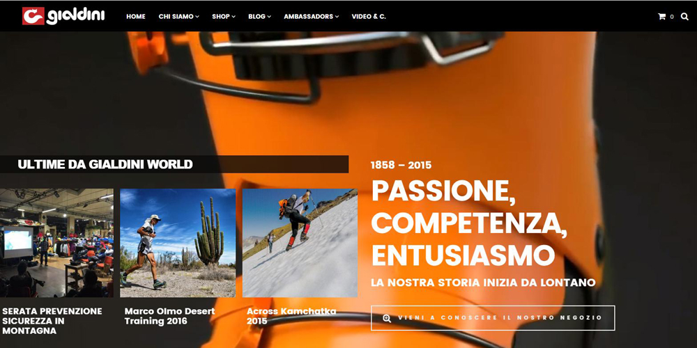 siti wordpress Brescia